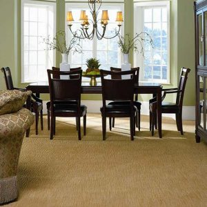 Fabrica Carpeting Chaska