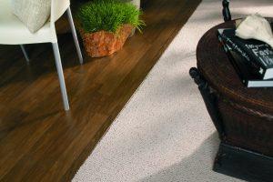 Dark Hardwood Flooring and Carpeting