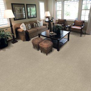 Masland Carpet for Living Room