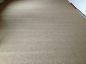 Roll Crush New Carpeting