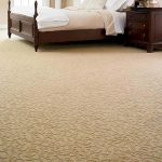 Nylon or Polyester … Which Makes the Best Carpeting?