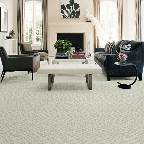 Fabrica Carpeting Minneapolis New Styles Hopkins