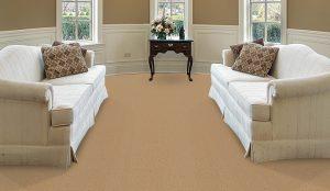 godfrey_hirst_carpets-living_room-country-light-floor