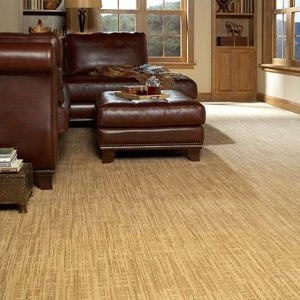 Fabrica Carpet in Hopkins MN
