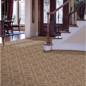 Wool Carpet Twin Cities