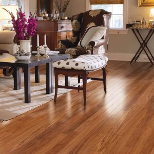 Twin Cities Laminate Flooring