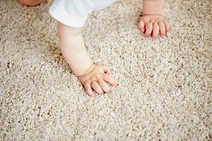 Stainmaster Live Well Carpet Fiber