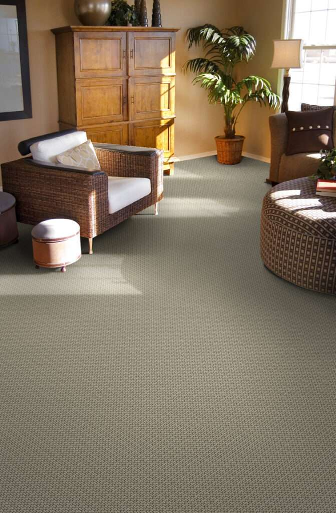 rental property carpet minneapolis